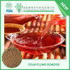 TOP grade sour plum powder/Really delicious new tang juice powder