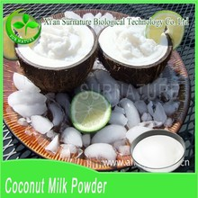 Factory prices of desiccated coconut powder bulk