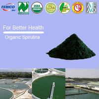Bulk Raw Materials Organic Spirulina and Premium non-organic Spirulina powder tablets Health Care Supplement