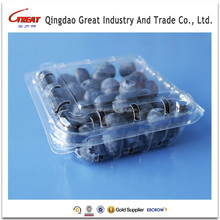 Disposable Fruit Blueberry Container Packing Tray