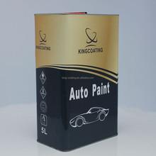 Auto Refinishing Paint 1K coating primer for plastic,pp,pe pa/Auto Paint Brand, Car Paint Supplies