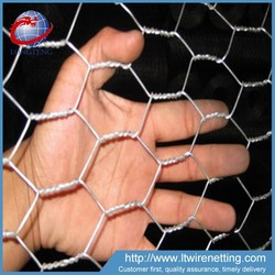 Trade Assurance High Quality Anping Hexagonal Mesh / Galvanized Hexagonal Wire Mesh