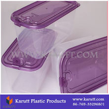 DongGuan colorful Custom clear Plastic Food storage box Container with lid