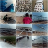 Daylighting corrugated plastic greenhouse panels,polycarbonate plastic panels for greenhouse