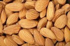 Exporting high quality almond with wholesale price