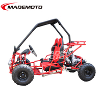 Best Quality 110cc 4 Stroke 2 Seater Off Road Pedal Go Kart for Sale