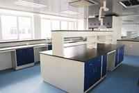 Steel plate with epoxy powder coated Laboratory Furniture Stainless Steel Dental Lab Mechanical Work Bench