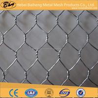 Galvanized chicken wire / Fish trap wire / Hexagonal wire mesh