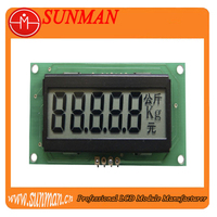 Custom segment lcd display for meter