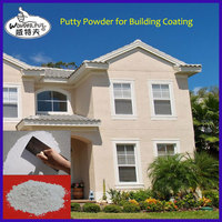 QW01 anti-crack wall putty (premixed dry powder)