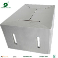 FANCY BOX FOR DRY FRUITS MANUFACTURER IN CHINA