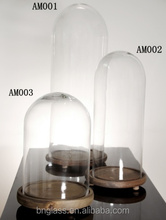 Clear Glass cloche with wood base