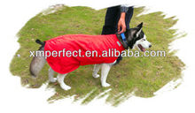 Royal Red dog coat