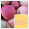 high quality juicy china fresh bulk apple fruit for sale with different size