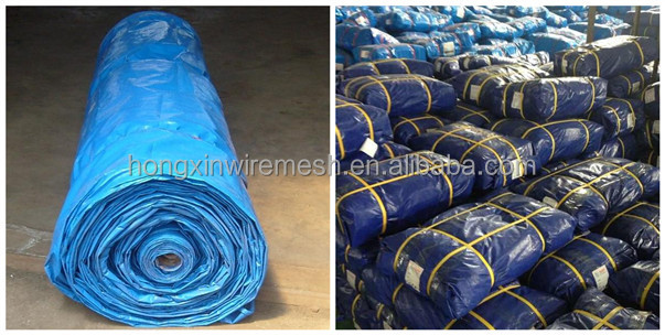 PE tarpaulin packing.jpg