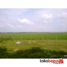 Factory and land for Factory in Jakarta and its surroundings, West Java and banten Province- Indonesia