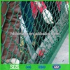 Vinyl coated chain link fence( Professional manufacturer )