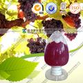 semente de uva extrato