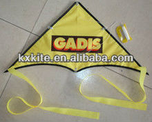 Small Delta Kite for prmotional from kite factory