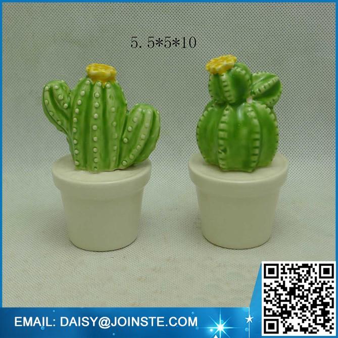 mini colorful cactus plants thailand,baby cactus plant (2).jpg