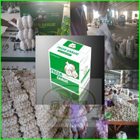 (HOT)Fresh garlic exports cheaper suppliers in China