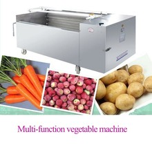 2015 Hot sale in India Australia Canada Pakistan Nepal spray home vegetable washing machine professional with high efficiency