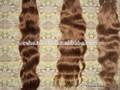 oscuro rubia de pelo