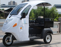 Passager &Cargo Use foldable adult tricycle