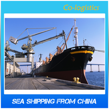 ship fans by sea freight