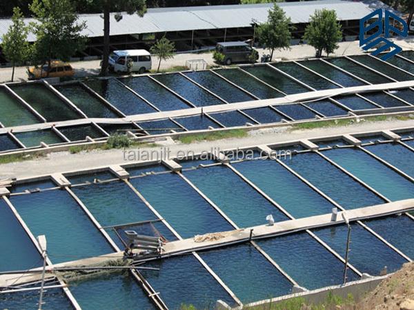 Fish Or Shrimp Farm Used Hdpe Geomembrane White Pond Liner
