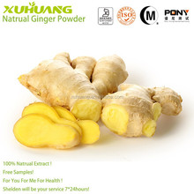 2015 New Batch Good Water Solubility Factory Supply ISO 9001 Free Samples Ginger Powder 120 Mesh Size