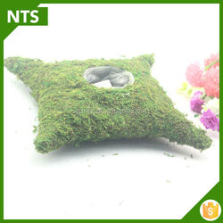 NTS Elegant Cheap Flower Moss Pots