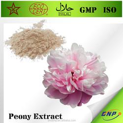 GMP&Kosher BNP High Quality 100% Natural Peony Extract Powder Paeoniflorin