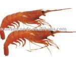 Frozen Red Shrimp(size:30/50,50/70)