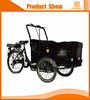 New design 3 wheel electric bike with basket for wholesales