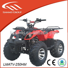Top sales! 250cc atv quad for sale with CE