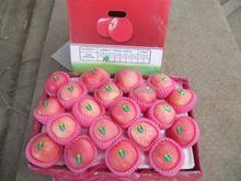 2014 Crop Chinese red fuji apple