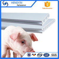 Cheap solid pvc board for pig farming/china pvc board for pig sty