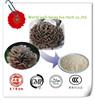 Plant extract Wild black cohosh extract,Triterpene Glycosides,Cimicifuga racemosa extract