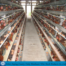 Chicken cage for poultry farm / hot sale chicken cage layer