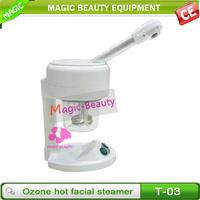 Ozone electric steam inhaler