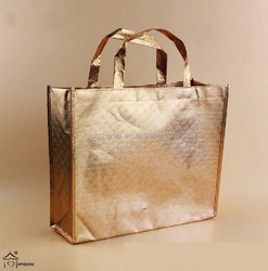 insulated non woven shopping bag/clothing bag for shopping