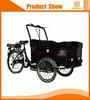 3 wheel motorized cargo bike three wheel family electric cargo bike