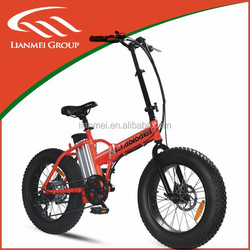 2015 new big tire electric beach cruiser bicycle chopper (LMTDR-03L-2)