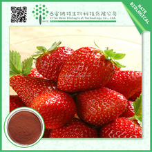 Factory Supply Products Natural Strawberry Extract 20:1