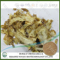 100% Natural Herb Angelica Dong Quai, Angelica Sinensis Extract, Angelica Extract