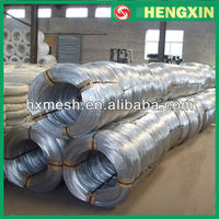 0.5mm Electric Galvanized Iron Wire(Factory)