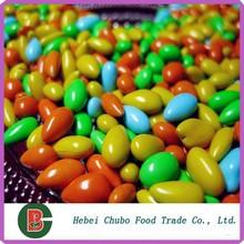 de girasol confitería del núcleo para el chocolate