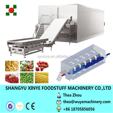 New Brand IQF Bilberry Fast Freezer Made In China
