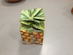 Fruit Packing Boxes
